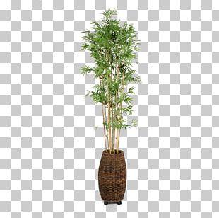 Flowerpot Bamboo Weaving Houseplant PNG