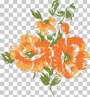 Flower Orange Blossom PNG