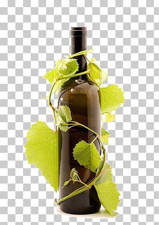 Red Wine Common Grape Vine Bottle Wine Glass PNG