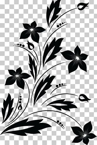 Flower Drawing Black And White PNG
