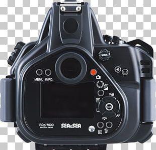 Digital SLR Canon EOS 750D Canon EOS 800D Camera Lens Canon EOS 300D PNG