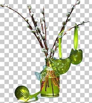 Vase Plant Stem PNG