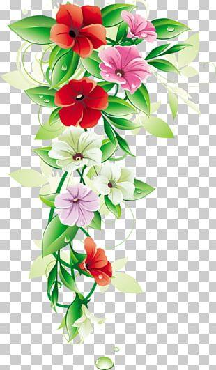 Flower Borders And Frames Floral Design PNG