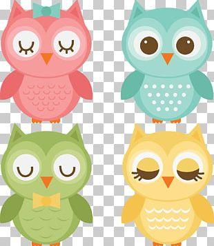 Baby Owls Bird PNG