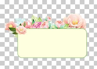 Floral Design Pink Cut Flowers Green PNG