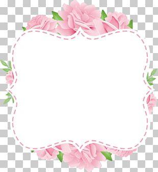 Paper Frames Flower PNG