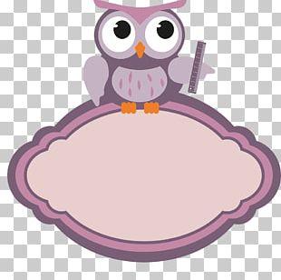 Teachers' Day Education Little Owl PNG