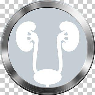 Laparoscopic Surgery Urology Endoscopy Procedimento Minimamente Invasivo PNG