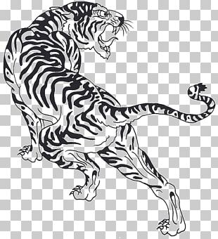 Tiger Cat Felidae Black And White Line Art PNG