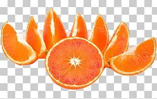 Blood Orange Tangerine Tangelo Clementine Grapefruit PNG