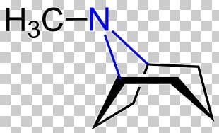 Cocaine Chemistry Erythroxylum Coca Chemical Substance Alkaloid PNG