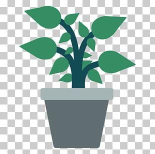 Flowerpot Houseplant Bonsai PNG