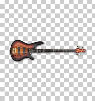 Bass Guitar Ibanez Musical Instruments String Instruments PNG
