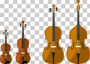 String Instrument Musical Instrument Cello Violin PNG