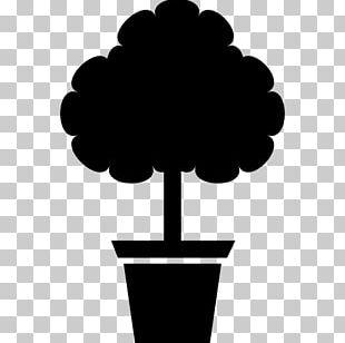 Flowerpot Garden Tree PNG