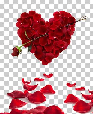 Rose Heart Flower Valentine's Day PNG