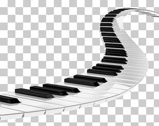 Musical Keyboard Piano PNG