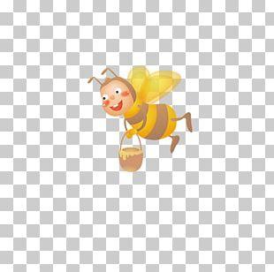 Honey Bee Cartoon Drawing Illustration PNG