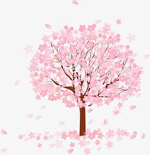 Pink Tree PNG
