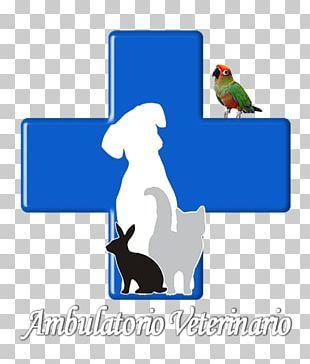 Veterinarian Cat Veterinary Medicine Dog Pet PNG