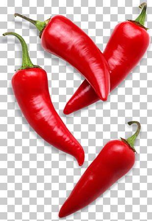 Cayenne Pepper Bell Pepper Capsicum Frutescens Chili Pepper Spice PNG
