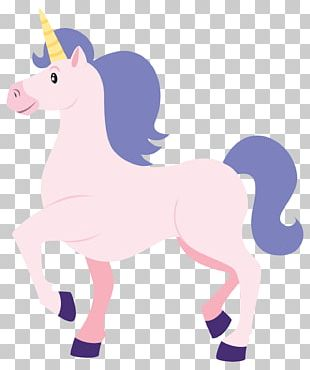 Party Favor Unicorn Birthday PNG