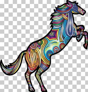 American Paint Horse Friesian Horse T-shirt Horse Breeding Wild Horse PNG