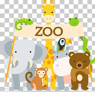 Lion Zoo Animal PNG