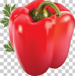 Chili Pepper Bell Pepper Capsicum Vegetable Spice PNG