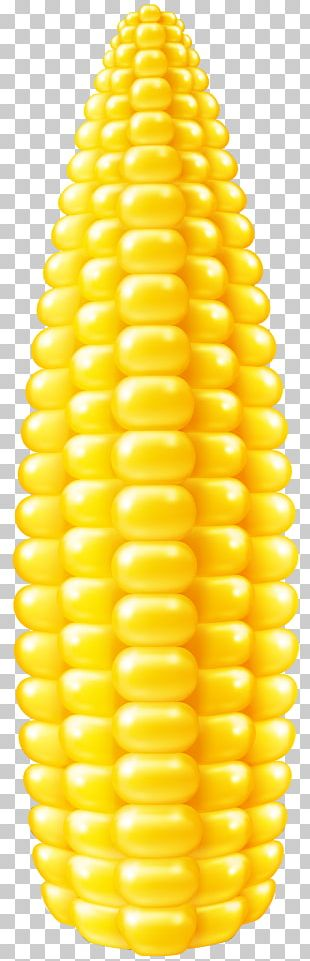 Corn On The Cob Maize Stock Illustration Corncob PNG