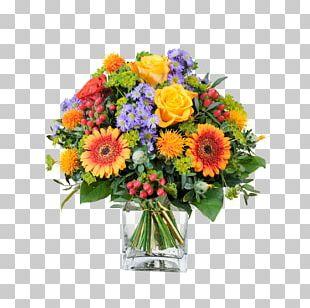 Transvaal Daisy Flower Bouquet Cut Flowers Floral Design PNG