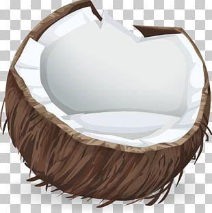 Coconut Water Coconut Milk Coconut Oil Coquito PNG