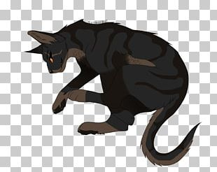 Cat Claw Tail Legendary Creature Animated Cartoon PNG