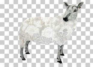 Sheep Cattle Goat Horn Animal PNG