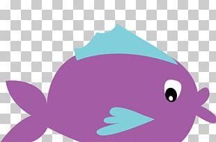 Desktop Marine Mammal Illustration PNG