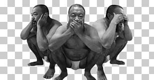Three Wise Monkeys Artist Protest And Dissent In China PNG