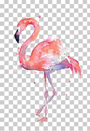 T-shirt Paper Flamingo Watercolor Painting Printmaking PNG