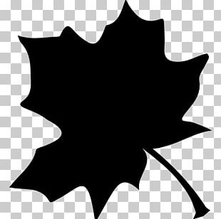 Maple Leaf Computer Icons Tree Shape PNG