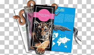 Never On Rest: Past Returns Animali Selvatici: Esplorazione Del Selvaggio Brand Map Flying Tiger Copenhagen PNG