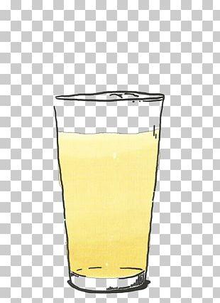 Highball Glass Orange Drink Orange Juice Harvey Wallbanger PNG