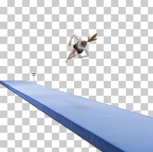 Tumbling Artistic Gymnastics International Gymnastics Federation Janssen-Fritsen PNG