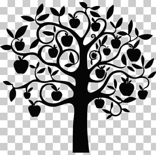 Drawing Apple Fruit Tree PNG