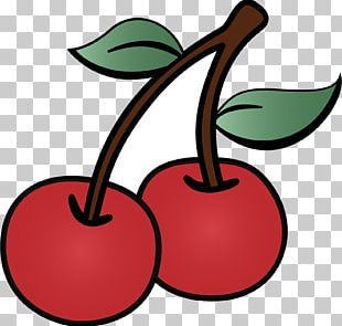 Cherry Drawing Cartoon PNG