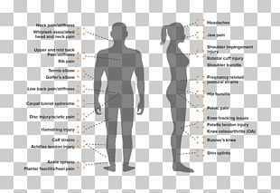Shoulder Human Behavior Homo Sapiens PNG