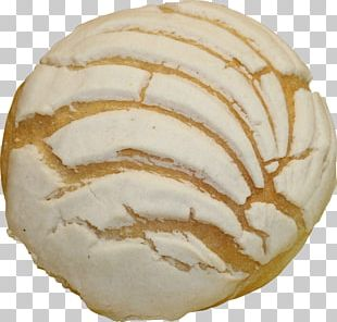 Pan Dulce Bakery Bread Concha Food PNG