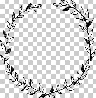 Laurel Wreath Drawing Flower PNG