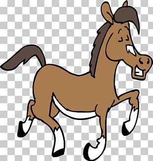 Arabian Horse American Quarter Horse American Paint Horse Pony PNG