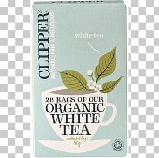 White Tea Organic Food Green Tea Clipper Tea PNG