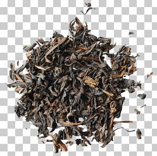 Oolong Assam Tea Nilgiri Tea Darjeeling Tea Tieguanyin PNG