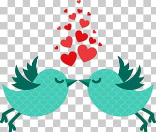 Valentines Day February 14 Love Illustration PNG